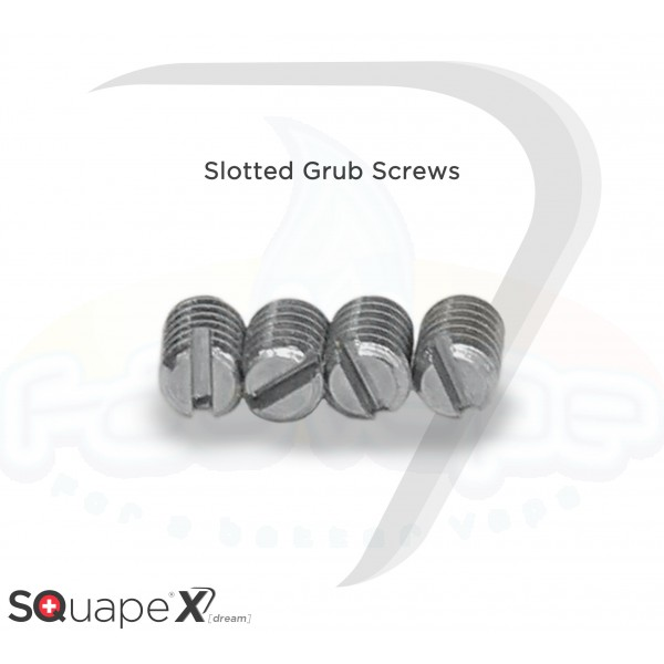 SQuape X[dream] Slotted grub screws